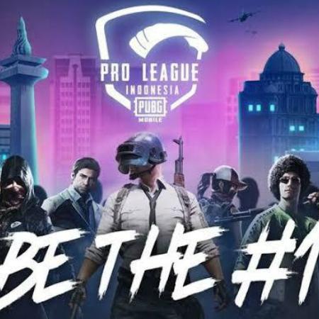 Siap Dimulai! Ini 24 Tim Peserta PUBGM Pro League 2020