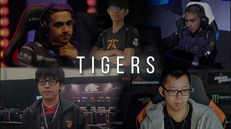 Telaah Potensi Tigers, Tim Terbaru dari IYD dan Xepher