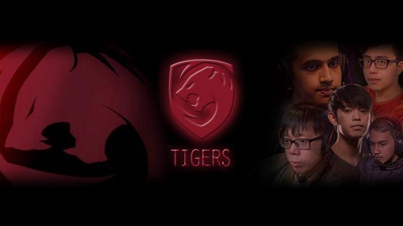 Sikat Na'Vi, Tigers Kian Dekat Gelar DreamLeague 10