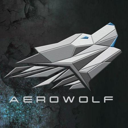 Tetap Optimis Meski Kalah, Aerowolf Rintis Jalan ke WCA 2017